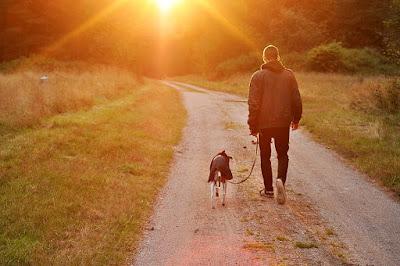 Pria bersama anjing
