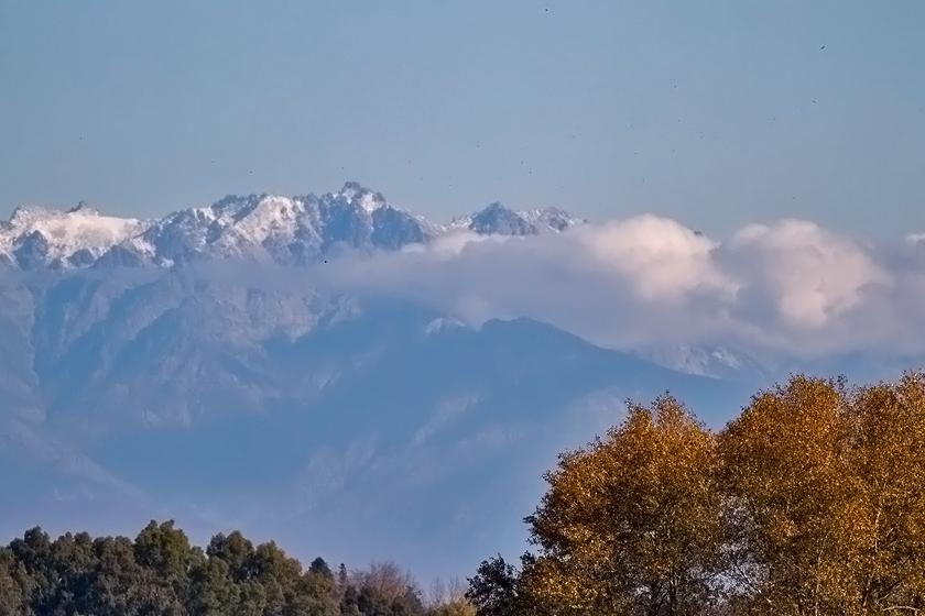 Spanish Steppes – Extremadura Nov 2012, Limosa Holidays