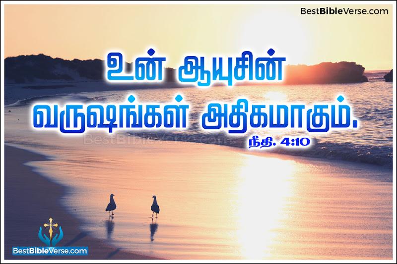 Matthew Bible Verses In Tamil