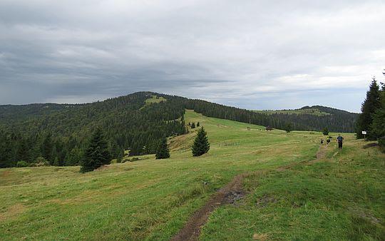 Turbacz, poniżej Hala Długa, a po lewej widać Czoło Turbacza.