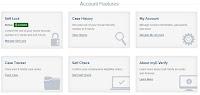 My E-Verify online account options