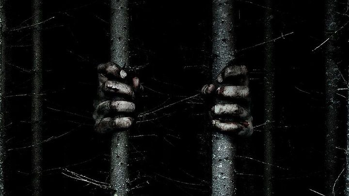 "The Woods horror movie, фильм ужасов ""Лес"" (2016)"