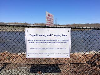 Conowingo Dam, Image 4