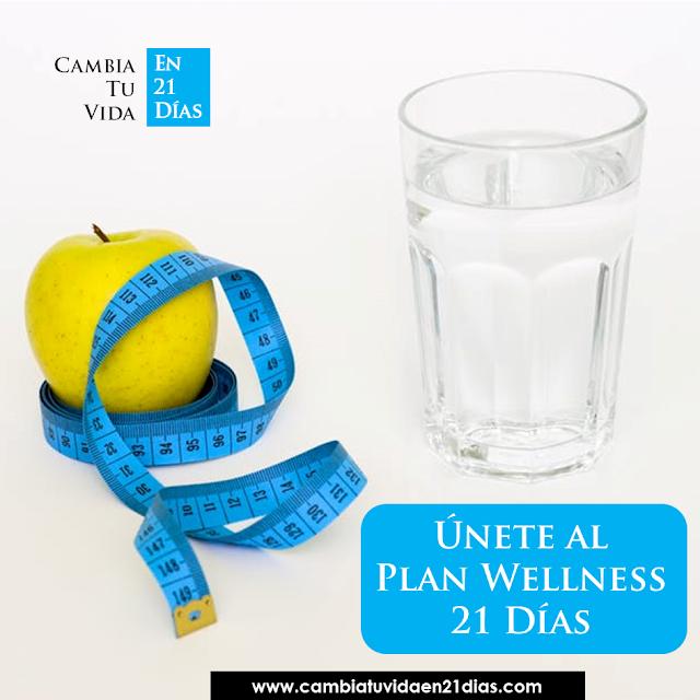 Plan Wellness 21 días Adelgaza comiendo sano