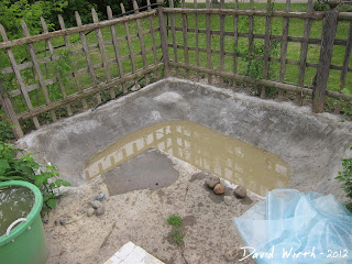 rain water in pond, concrete pond full of water