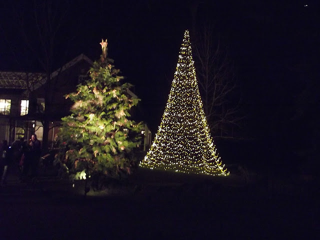 Christmas Light Shows and Displays in Chester County and Surrounding Area