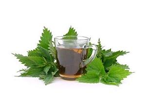 Ceaiul-decoct din plante medicinale