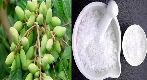 Phương thuốc chữa amidan bằng quả trám và phèn chua