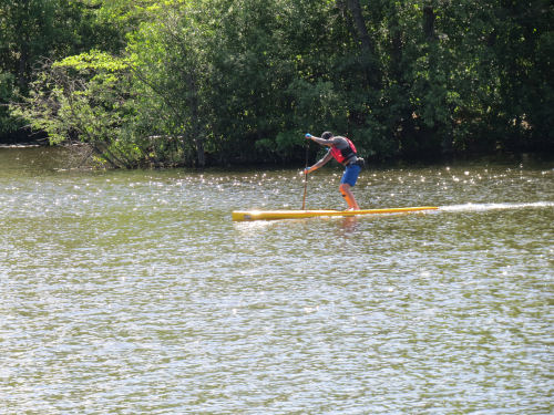 Paddleboard on Huron River