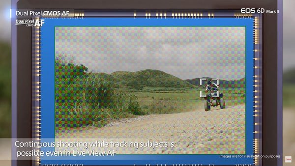 Покрытие зоны DualPixel AF в камере Canon EOS 6D Mark II