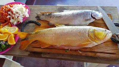 Asado with fish