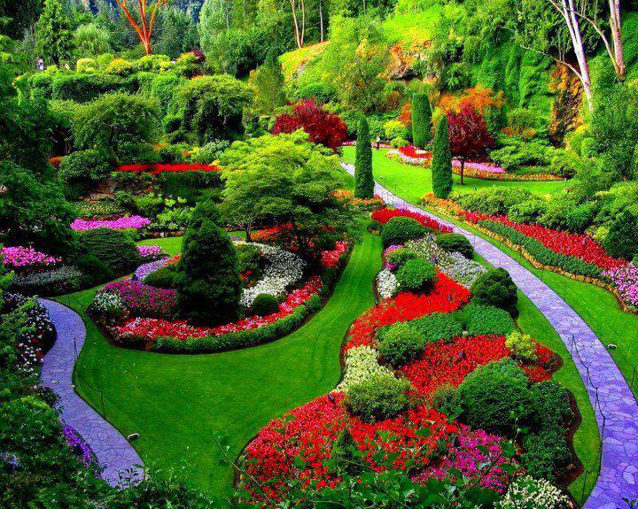 yoges great nature butchart gardens near victoria vancouver island british columbia canada. Black Bedroom Furniture Sets. Home Design Ideas