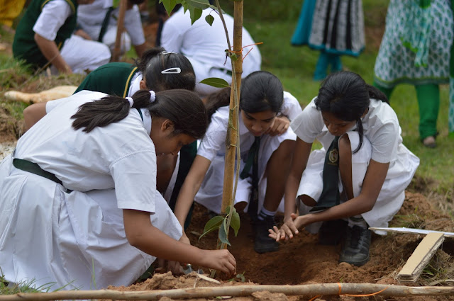 Reforestation Drive conducted by TKM at the Bannerghatta National Park