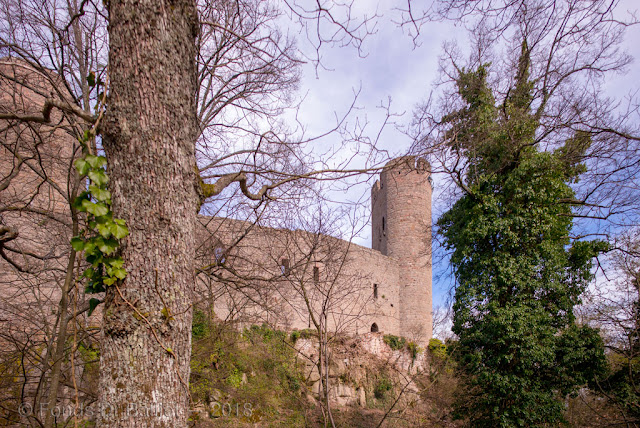 Haut château, front ouest précédé d'une fausse-braie et d'un fossé.