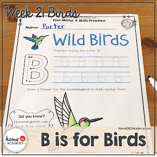 https://www.teacherspayteachers.com/Product/Birds-Preschool-Unit-Printables-for-Preschool-PreK-Homeschool-Preschool-3590816