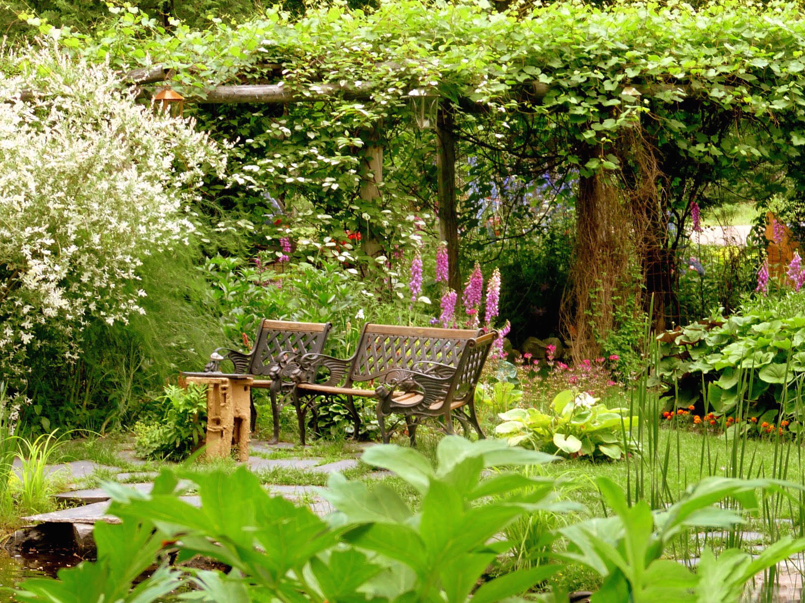 Wallpapers Fair: Peaceful Summer Garden Pictures For House