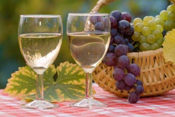 ¿Cómo elegir un vino blanco? Te proponemos doce para escoger y acertar con el mejor