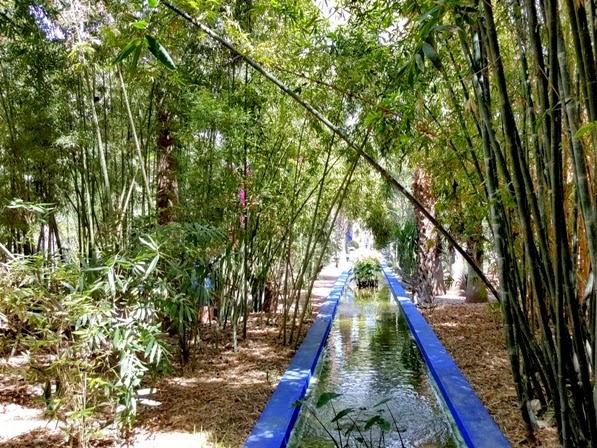 Marrakech: Jardin Majorelle