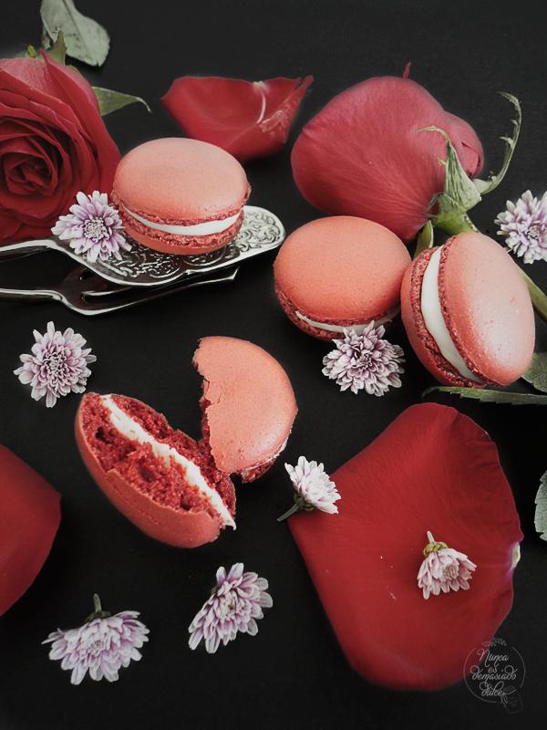 red-velvet-macarons-macaron-rojo-galleta-cuento-zapatillas-zapatitos-rojos-rojas