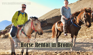 Horse Rental in Bromo