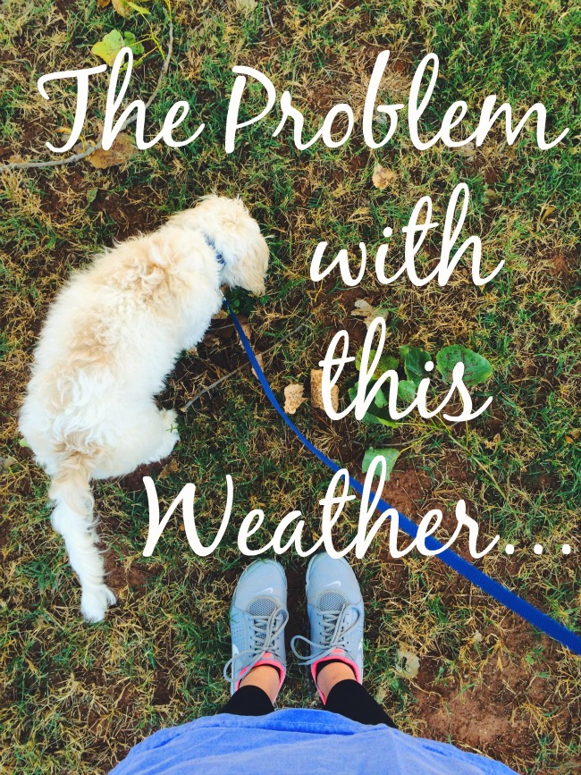 The_Problem_With_This_Weather