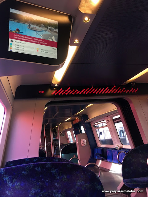 interior tren dinamarca