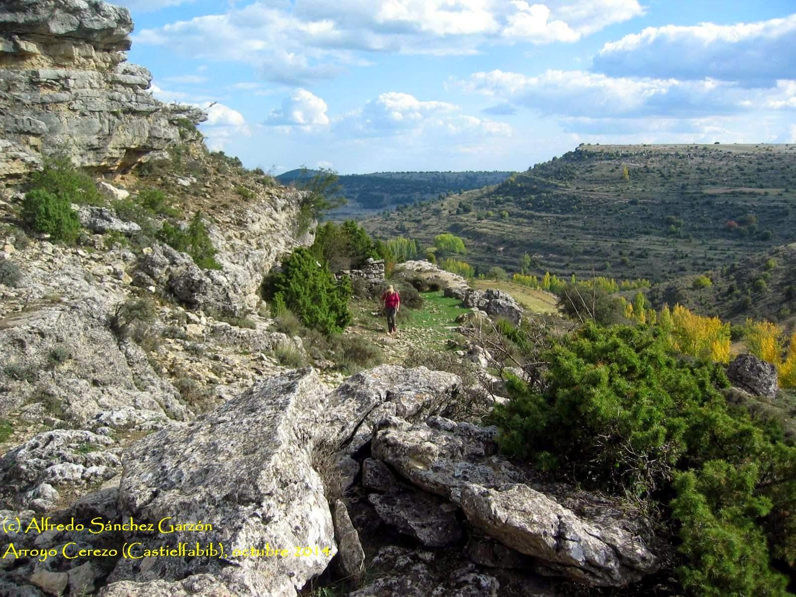 arroyo-cerezo-fuente-abrevador-tres-reinos