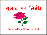 5 Lines on Rose in Hindi