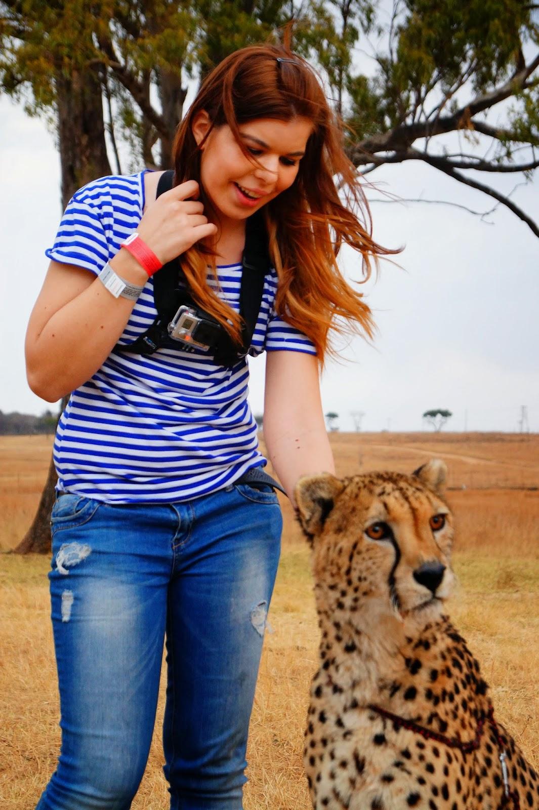 The Cheetah Walk