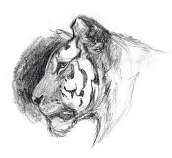 drawings animal animals epic reference drawing sketches draw sketching basic marker awesome creature study amazing