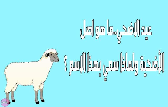 عيد الاضحي
