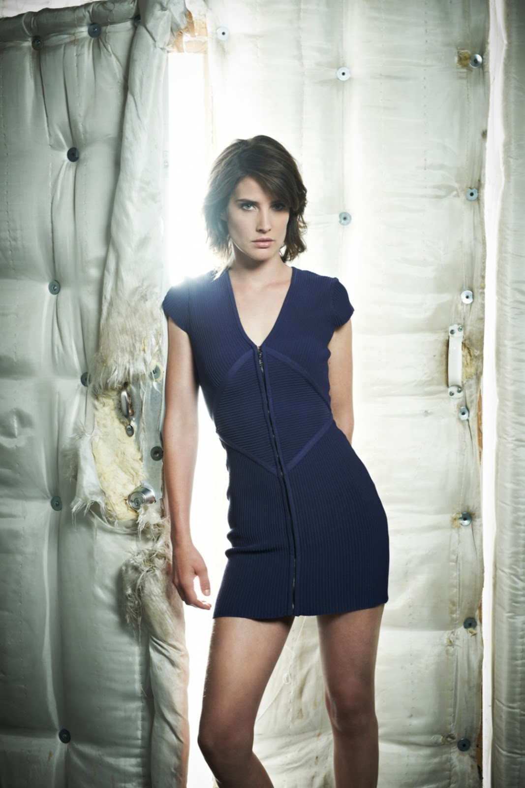 cobie smulder 2016 cobie smulder 2014 cobie smulders 2005 cobie smulders 2009