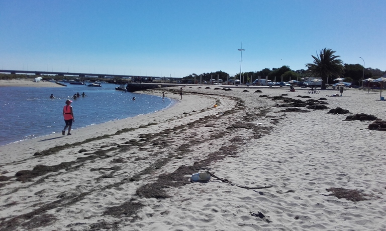 Lixo na Praia Fluvial Samouco