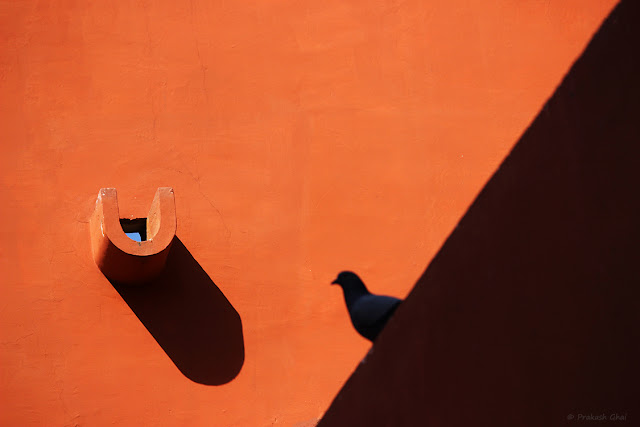 A Simple Minimalist Photograph of a Pigeon Sitting on a Red / Orange wall versus the Long Shadow of a Water Outlet, shot at Jawahar Kala Kendra, Jaipur.