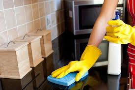 property management tips for ridding household ants