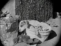 """Кадр из фильма Чарли Чаплина """"Собачья жизнь"""" / A Dog's Life (1918) - 2"""
