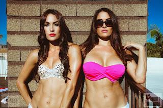 Bella Twins Return to WWE
