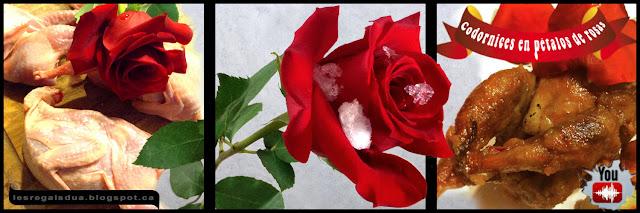 Codornices en petalos de rosas