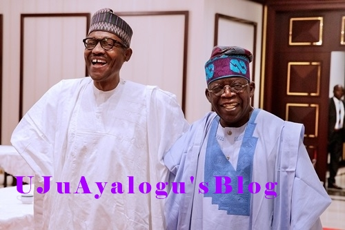 Aso Rock Meeting: I'm Ready to Rebel If Necessary - Tinubu Shutdown Question on Buhari's 2nd Term