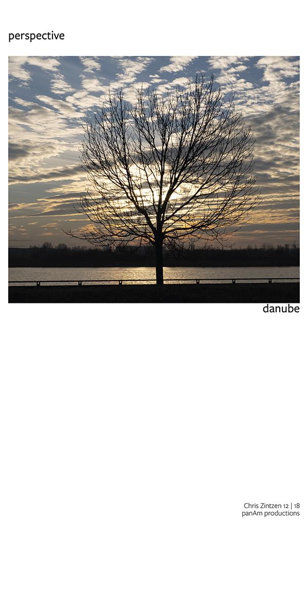 tree | perspective | Chris Zintzen | panAm productions