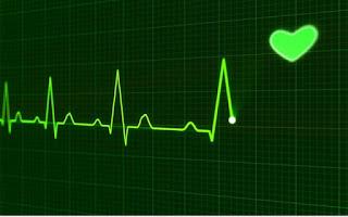 Ritmo cardíaco y corazón