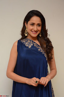 Pragya Jaiswal in beautiful Blue Gown Spicy Latest Pics February 2017 055.JPG