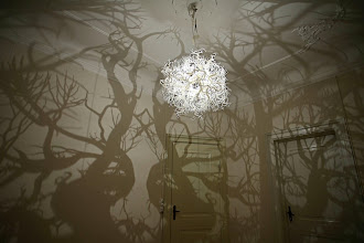 Design : Forms in nature, installation lumineuse par Hilden and Diaz