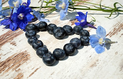manfaat-buah-blueberry-bagi-kesehatan,www.healthnote25.com