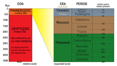 Teori Awal Kehidupan di Bumi (Arkaekum, Paleozoikum, Mesozoikum, Neozoikum)