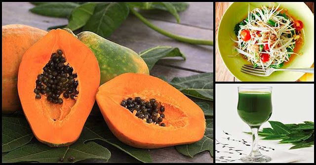 Studies: Papaya Can Help Fight Cancer