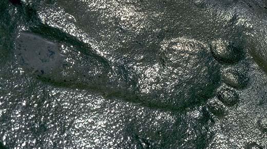 Huella humana de hace 290 millones de años descubierto