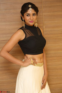Roshni Prakash in a Sleeveless Crop Top and Long Cream Ethnic Skirt 058.JPG