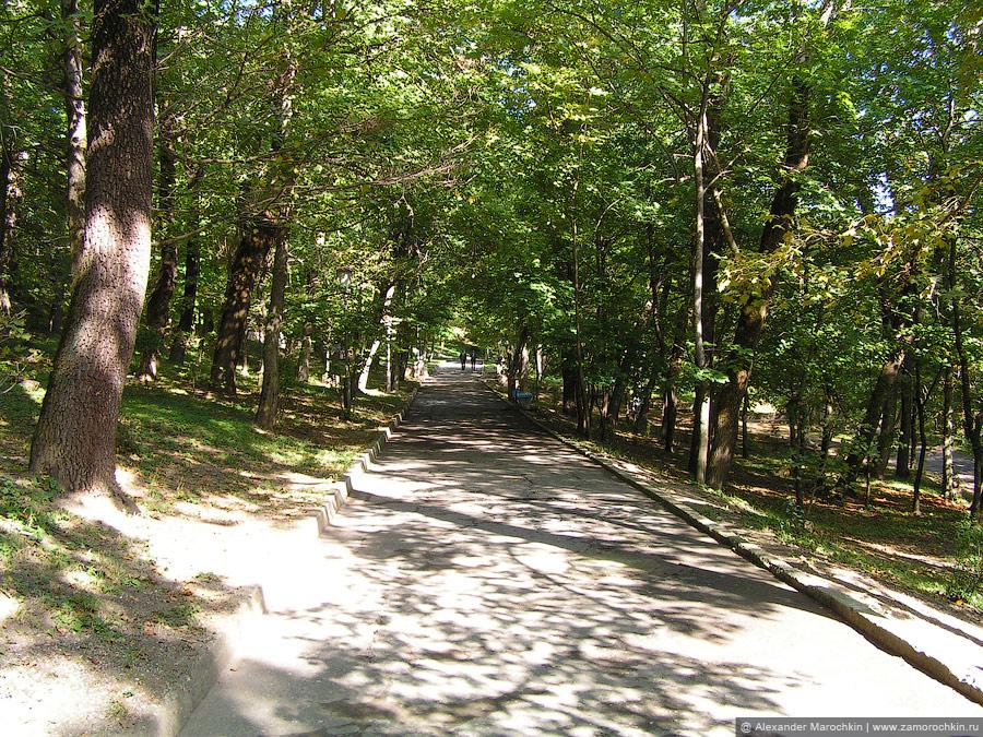 Дорожки для прогулок в железноводском курортном парке