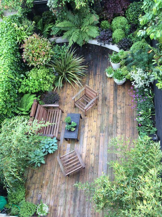 Moon to moon small jungle style gardens for Small urban garden design